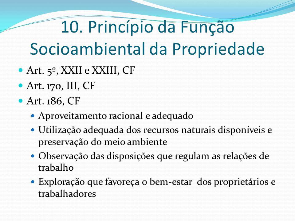10. Princípio da Função Socioambiental da Propriedade Art. 5º, XXII e XXIII, CF Art. 170, III, CF Art. 186, CF Aproveitamento racional e adequado Util