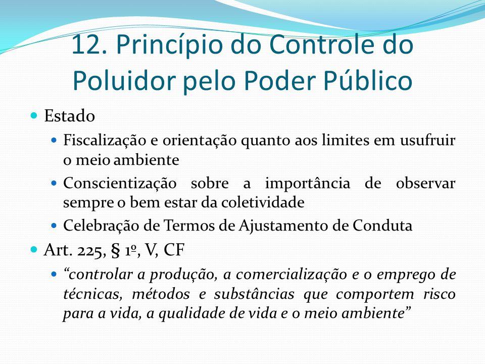 12. Princípio do Controle do Poluidor pelo Poder Público Estado Fiscalização e orientação quanto aos limites em usufruir o meio ambiente Conscientizaç
