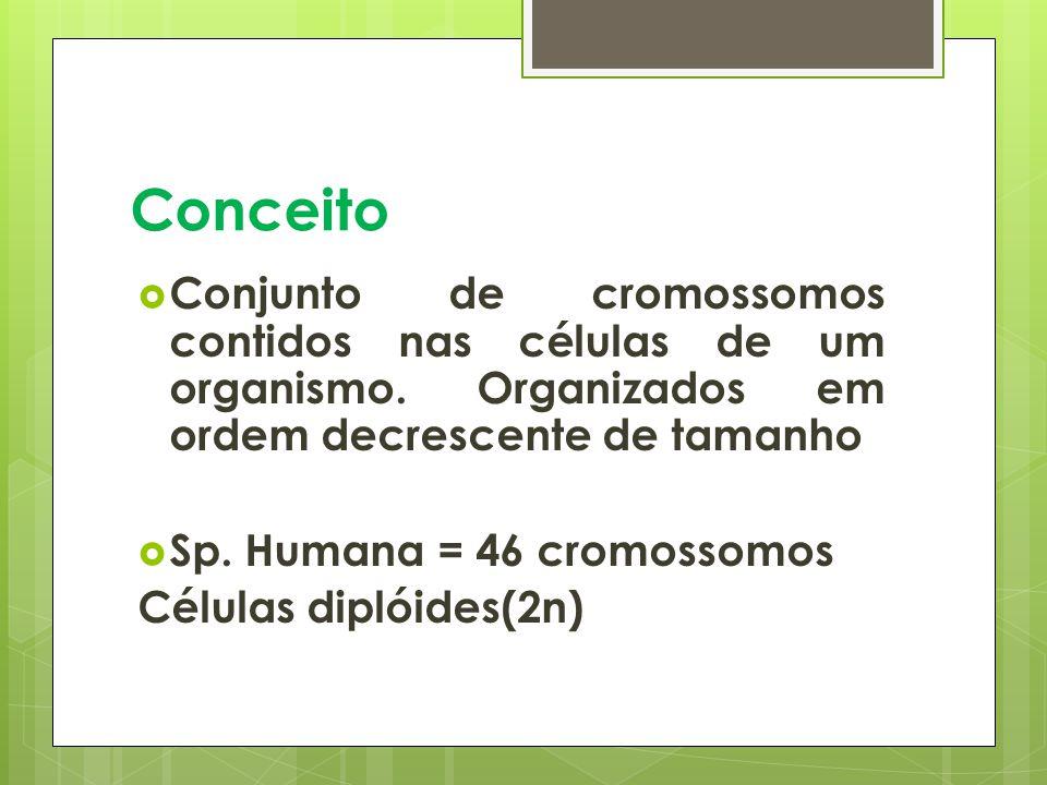 Conceito Conjunto de cromossomos contidos nas células de um organismo.