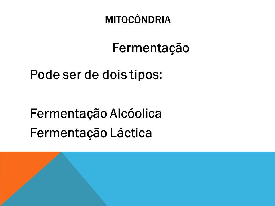 MITOCÔNDRIA Pode ser de dois tipos: Fermentação Alcóolica Fermentação Láctica Fermentação