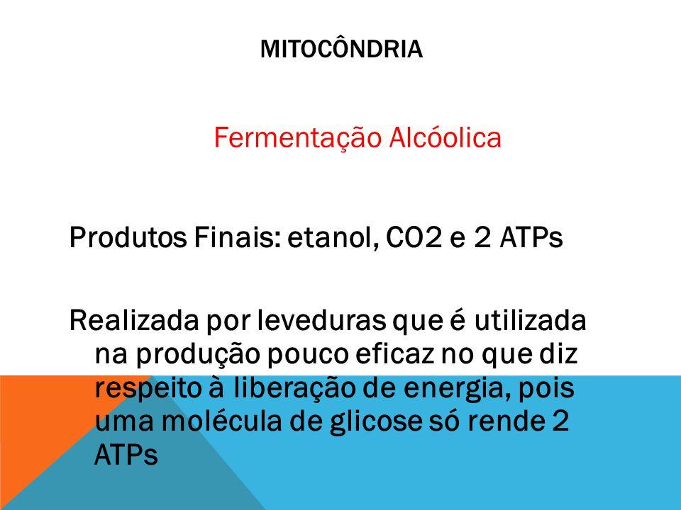 MITOCÔNDRIA Produtos Finais: etanol, CO2 e 2 ATPs Realizada por leveduras que é utilizada na produção pouco eficaz no que diz respeito à liberação de
