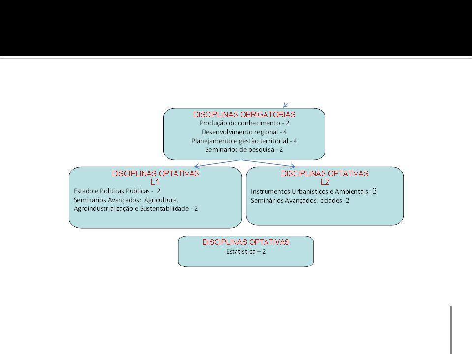 2.4 Contribuição dos docentes para atividades de ensino e/ou de pesquisa na graduação.