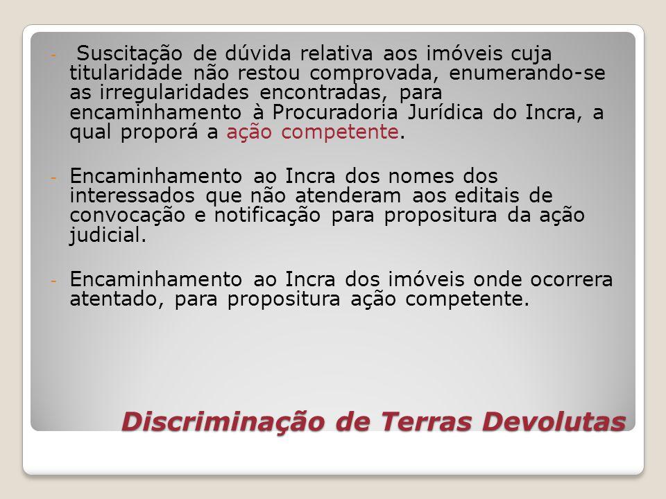 Discriminação de Terras Devolutas - Suscitação de dúvida relativa aos imóveis cuja titularidade não restou comprovada, enumerando-se as irregularidade