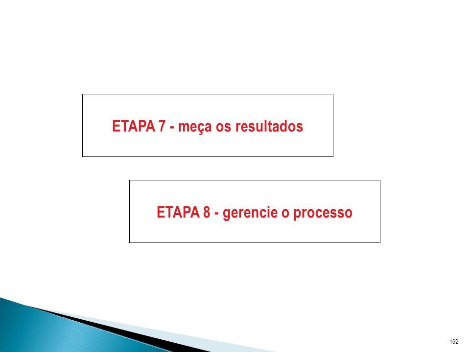 162 ETAPA 7 - meça os resultados ETAPA 8 - gerencie o processo
