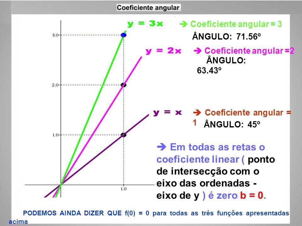 FAP152 – Introdução às Medidas em Física Coeficiente angular = 1 Em todas as retas o coeficiente linear ( ponto de intersecção com o eixo das ordenada