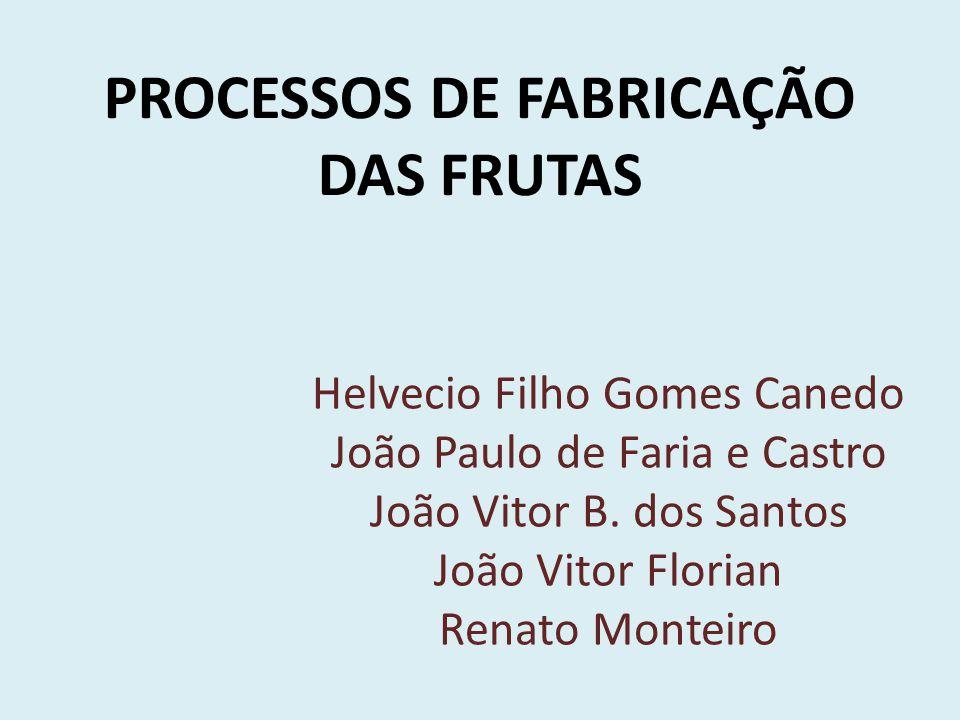 PROCESSOS DE FABRICAÇÃO DAS FRUTAS Helvecio Filho Gomes Canedo João Paulo de Faria e Castro João Vitor B.