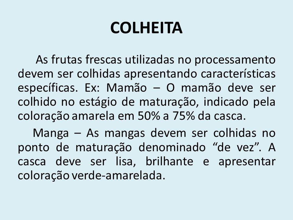 COLHEITA As frutas frescas utilizadas no processamento devem ser colhidas apresentando características específicas. Ex: Mamão – O mamão deve ser col