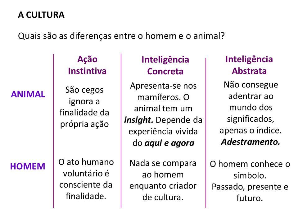 A CULTURA Quais são as diferenças entre o homem e o animal.