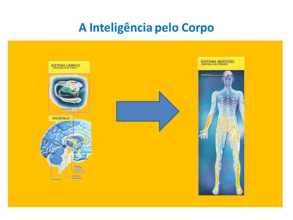 A Inteligência pelo Corpo