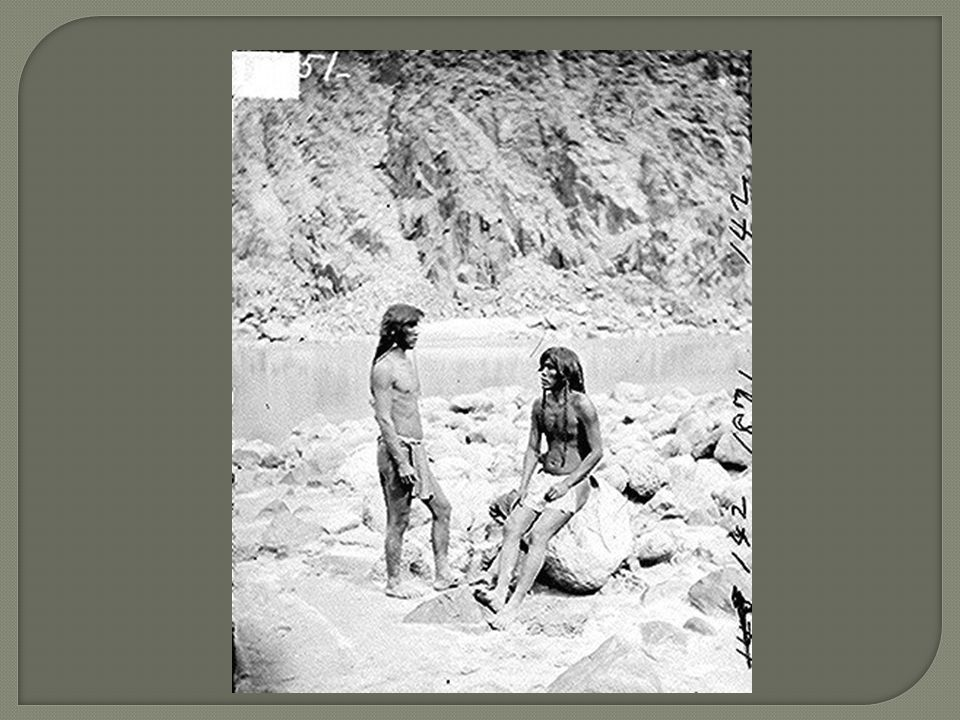 August Sander 17/11/1876 – 20/04/1964 Fotógrafo documental que adquiriu notoriedade especialmente a partir de seu grande projeto fotodocumental, Homens do Século XX, iniciado em 1910.