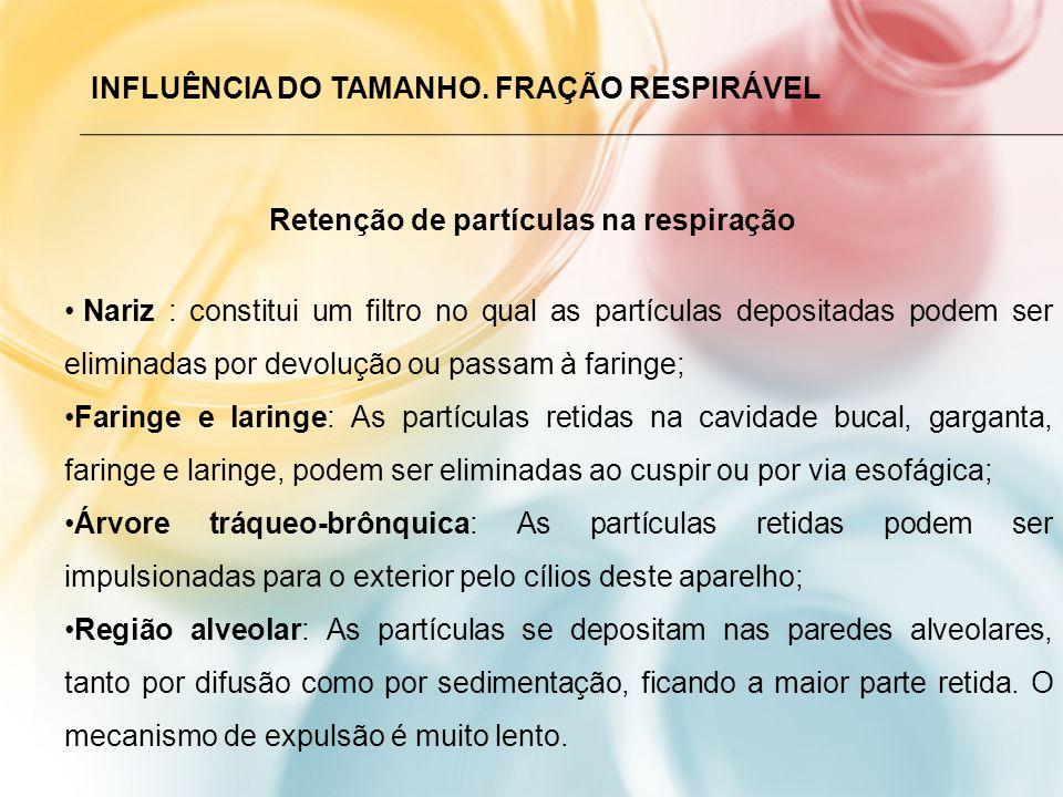 INFLUÊNCIA DO TAMANHO.