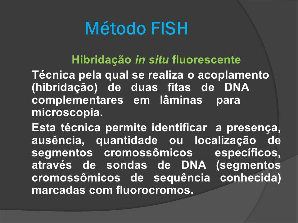 Método FISH Hibridação in situ fluorescente Técnica pela qual se realiza o acoplamento (hibridação) de duas fitas de DNA complementares em lâminas par