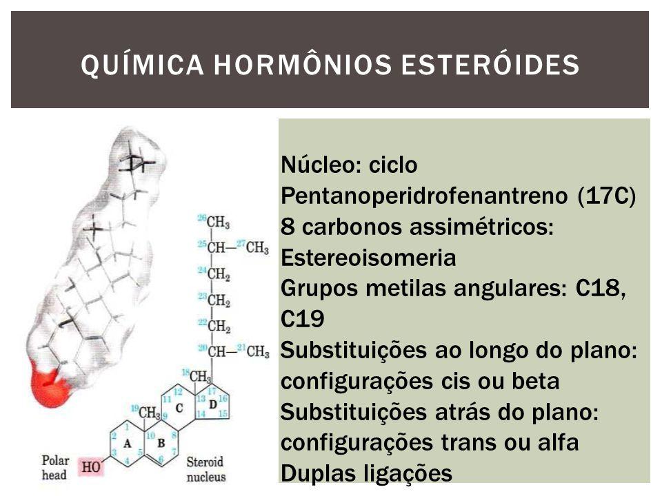 QUÍMICA HORMÔNIOS ESTERÓIDES Núcleo: ciclo Pentanoperidrofenantreno (17C) 8 carbonos assimétricos: Estereoisomeria Grupos metilas angulares: C18, C19 Substituições ao longo do plano: configurações cis ou beta Substituições atrás do plano: configurações trans ou alfa Duplas ligações