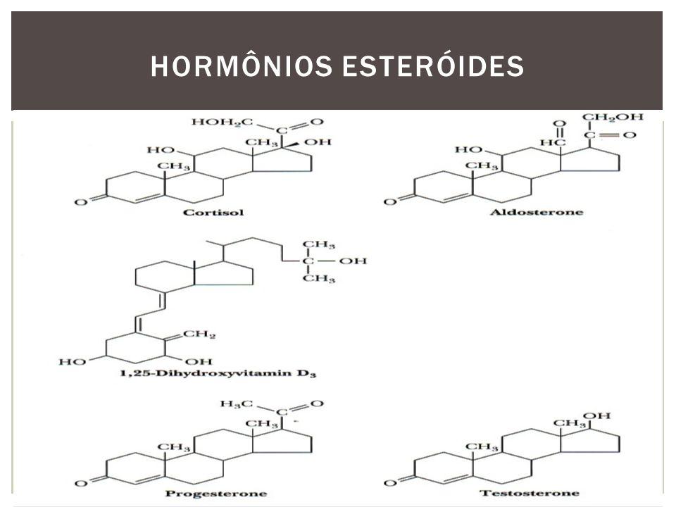 ENZIMAS / Pregnenolona(21C) Citocromo (P450 SCC) colesterol \ isocaproaldeído(6C) Hidroxilases (O2, NADPH) - coenzima das sínteses redutivas Desidrogenases Isomerase Liase Aromatase BIOSSÍNTESE HORMÔNIOS ESTERÓIDES