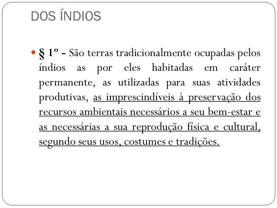 DOS ÍNDIOS § 1º - São terras tradicionalmente ocupadas pelos índios as por eles habitadas em caráter permanente, as utilizadas para suas atividades pr