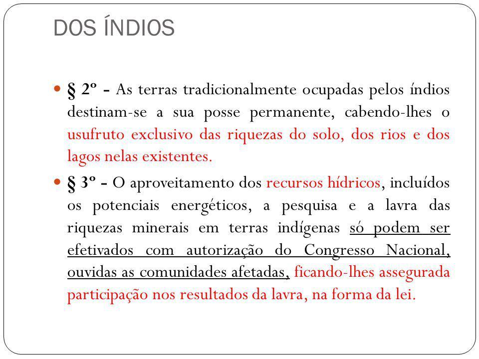 DOS ÍNDIOS § 2º - As terras tradicionalmente ocupadas pelos índios destinam-se a sua posse permanente, cabendo-lhes o usufruto exclusivo das riquezas
