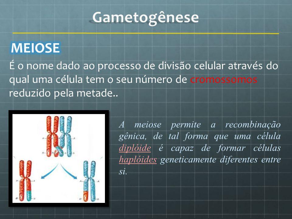 É o nome dado ao processo de divisão celular através do qual uma célula tem o seu número de cromossomos reduzido pela metade.. A meiose permite a reco