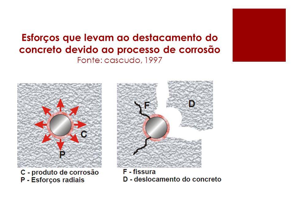 Esforços que levam ao destacamento do concreto devido ao processo de corrosão Fonte: cascudo, 1997