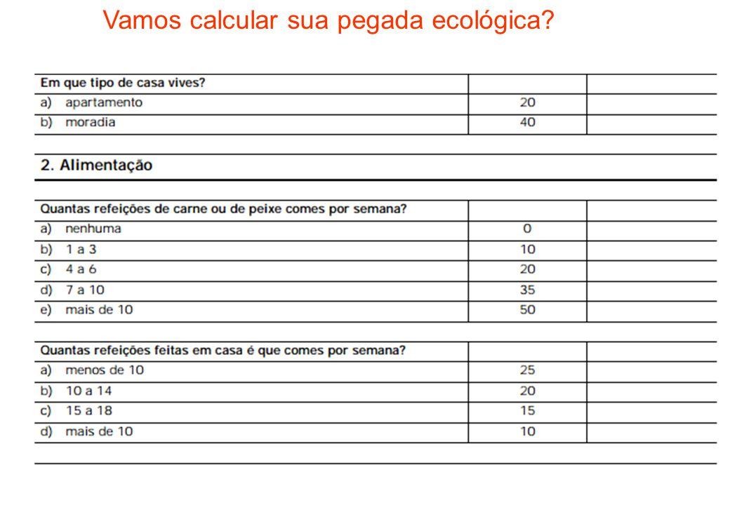 Vamos calcular sua pegada ecológica?