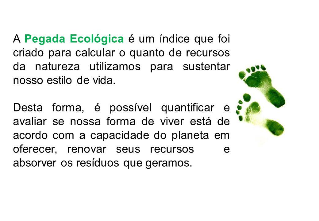 A Pegada Ecológica é um índice que foi criado para calcular o quanto de recursos da natureza utilizamos para sustentar nosso estilo de vida. Desta for