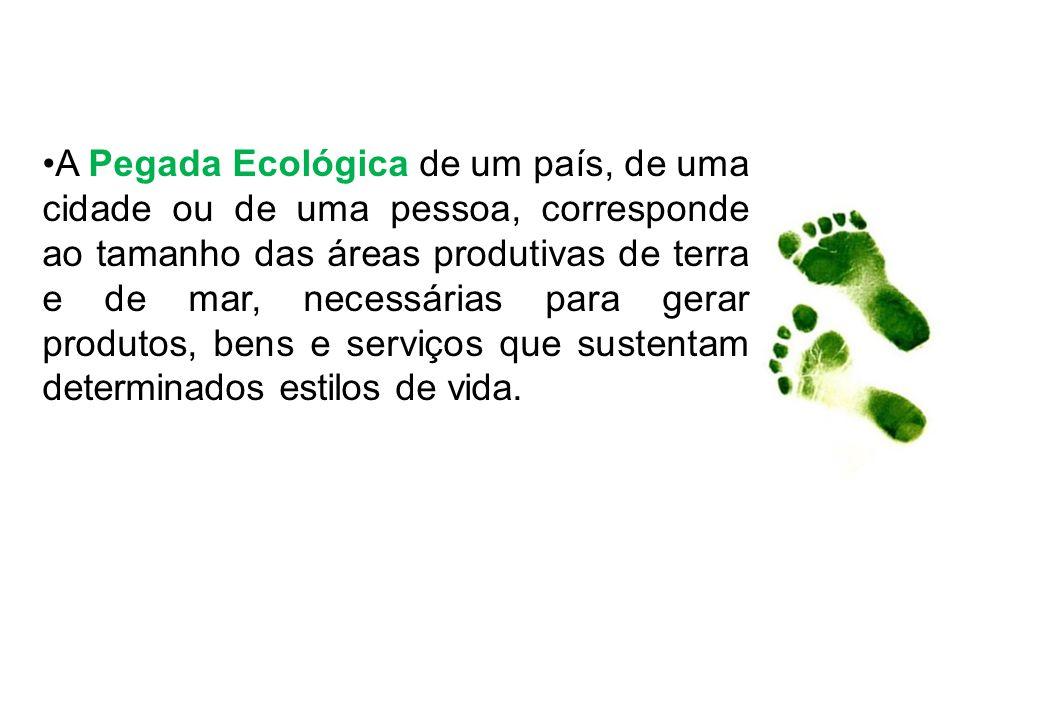 A Pegada Ecológica de um país, de uma cidade ou de uma pessoa, corresponde ao tamanho das áreas produtivas de terra e de mar, necessárias para gerar p