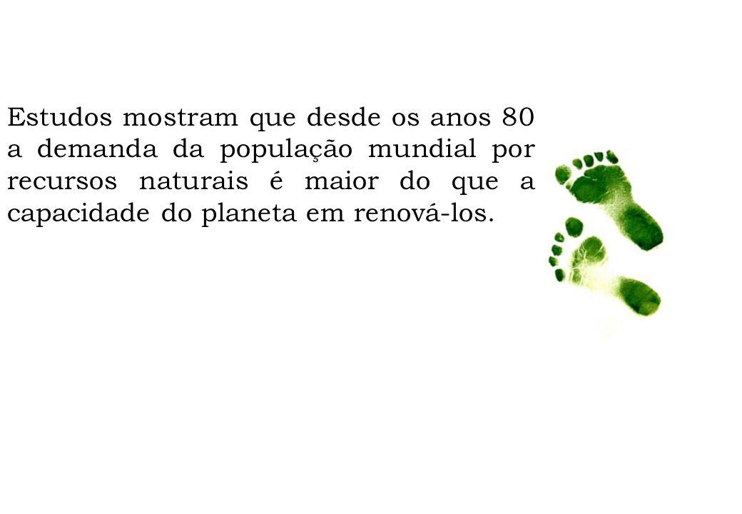 Qual a relação entre o seu cotidiano e o meio ambiente.