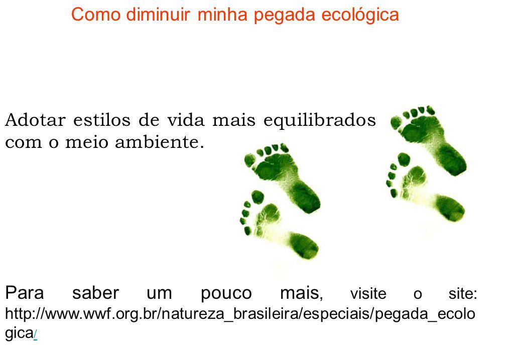 E qual é a sua pegada ecológica?