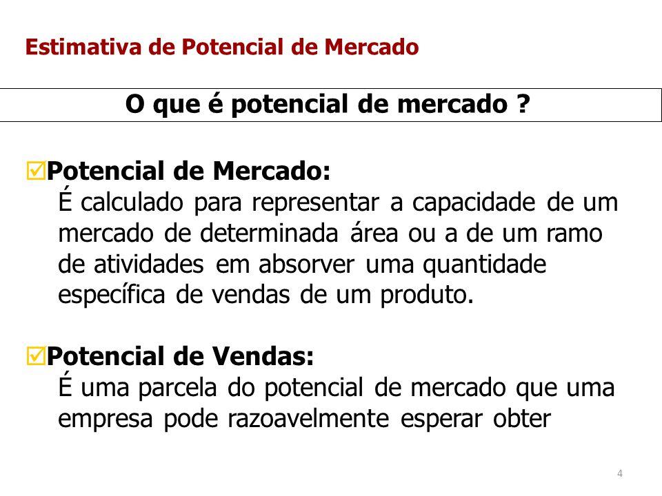 5 O que é potencial de mercado .