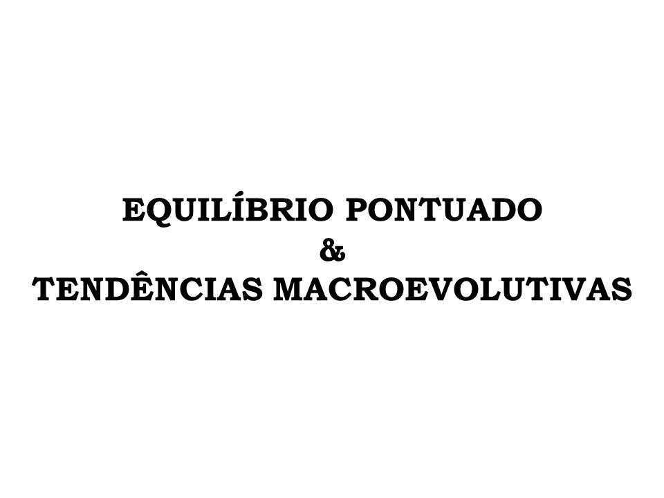 EQUILÍBRIO PONTUADO & TENDÊNCIAS MACROEVOLUTIVAS