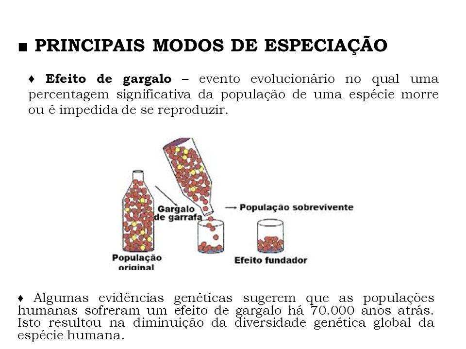 Efeito de gargalo – evento evolucionário no qual uma percentagem significativa da população de uma espécie morre ou é impedida de se reproduzir. PRINC