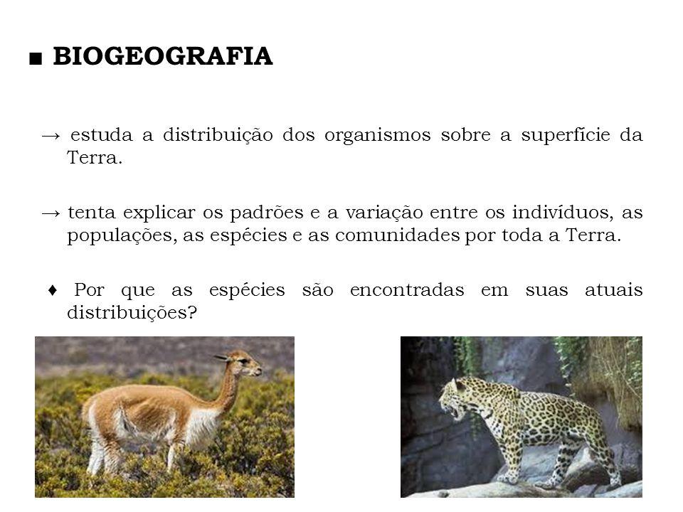 estuda a distribuição dos organismos sobre a superfície da Terra. tenta explicar os padrões e a variação entre os indivíduos, as populações, as espéci