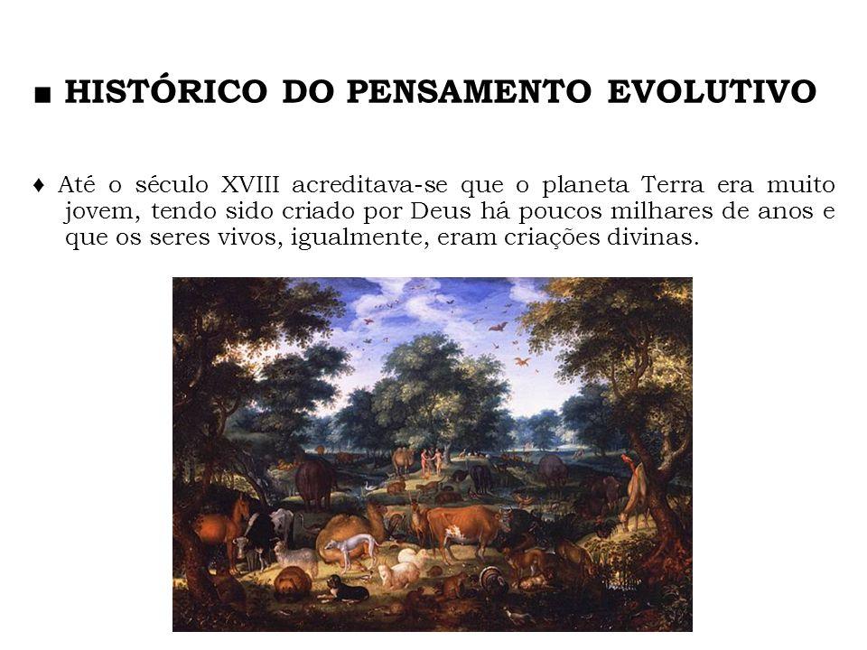 HISTÓRICO DO PENSAMENTO EVOLUTIVO Até o século XVIII acreditava-se que o planeta Terra era muito jovem, tendo sido criado por Deus há poucos milhares