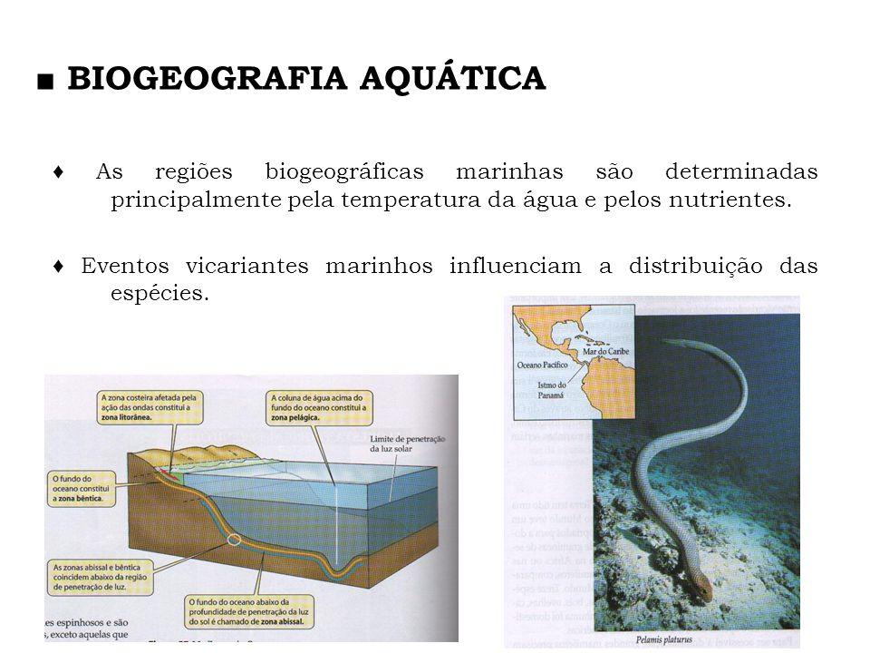 As regiões biogeográficas marinhas são determinadas principalmente pela temperatura da água e pelos nutrientes. Eventos vicariantes marinhos influenci