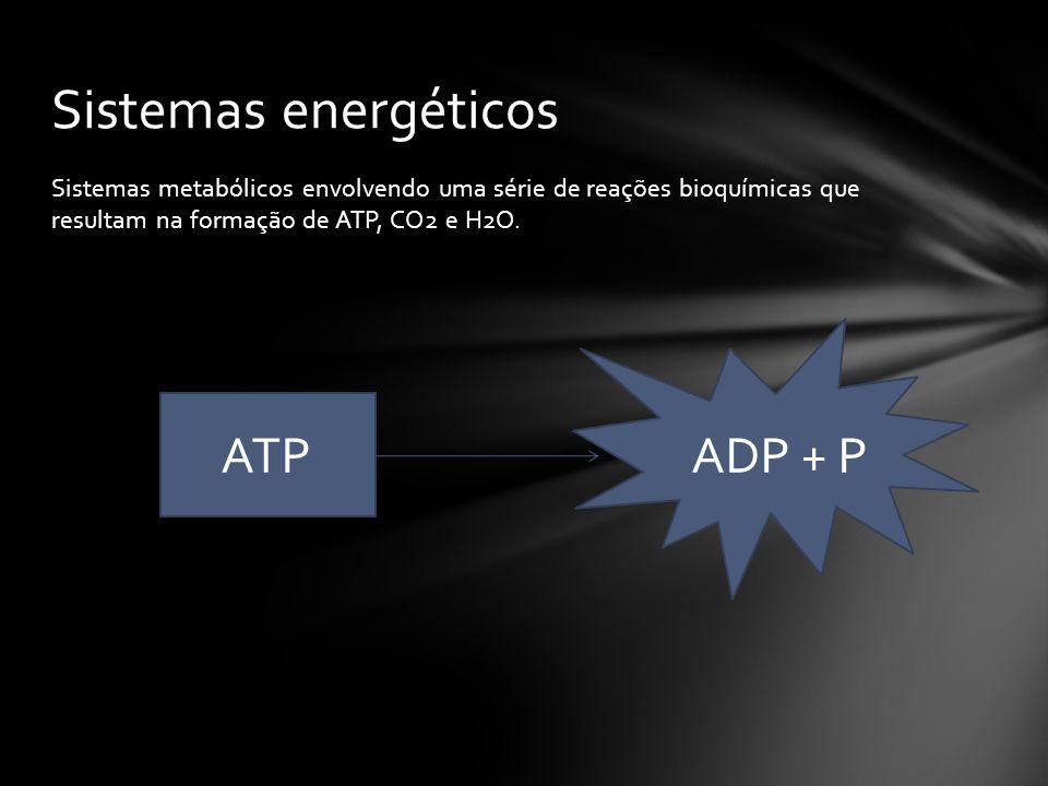 Sistemas metabólicos envolvendo uma série de reações bioquímicas que resultam na formação de ATP, CO2 e H2O.