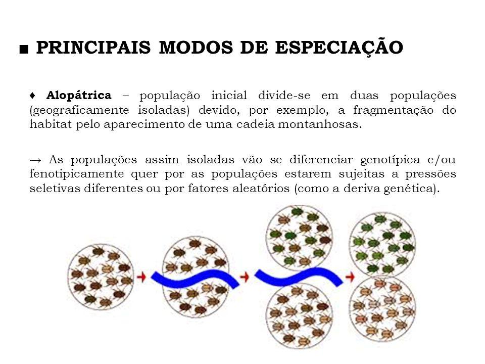 Alopátrica – população inicial divide-se em duas populações (geograficamente isoladas) devido, por exemplo, a fragmentação do habitat pelo apareciment