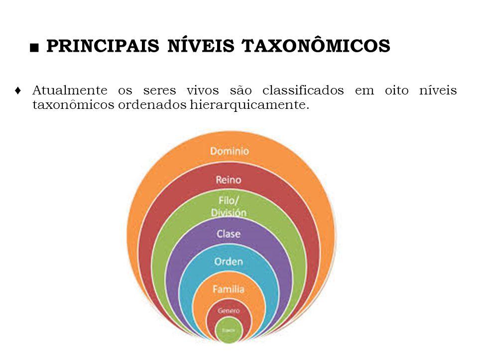 PRINCIPAIS NÍVEIS TAXONÔMICOS Atualmente os seres vivos são classificados em oito níveis taxonômicos ordenados hierarquicamente.