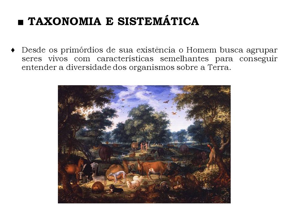 TAXONOMIA E SISTEMÁTICA Desde os primórdios de sua existência o Homem busca agrupar seres vivos com características semelhantes para conseguir entende