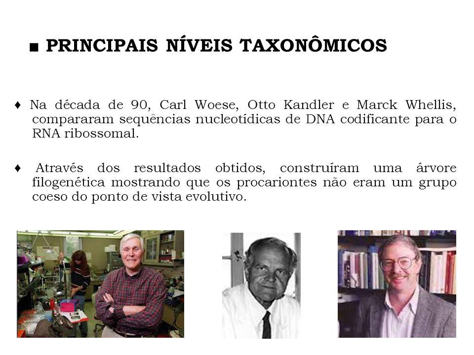 PRINCIPAIS NÍVEIS TAXONÔMICOS Na década de 90, Carl Woese, Otto Kandler e Marck Whellis, compararam sequências nucleotídicas de DNA codificante para o