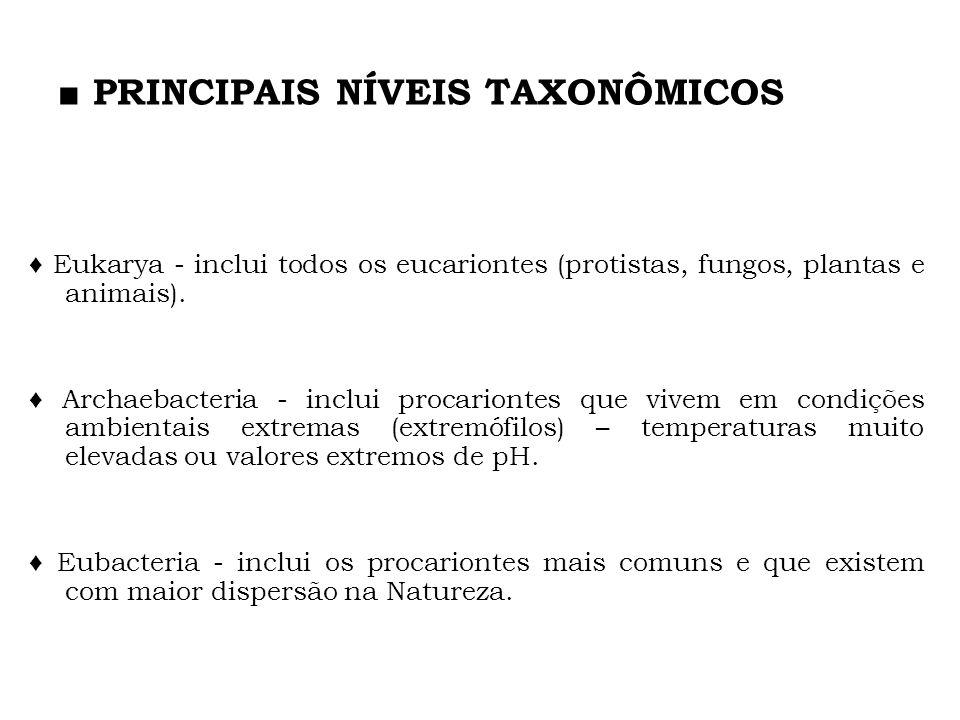 PRINCIPAIS NÍVEIS TAXONÔMICOS Eukarya - inclui todos os eucariontes (protistas, fungos, plantas e animais). Archaebacteria - inclui procariontes que v