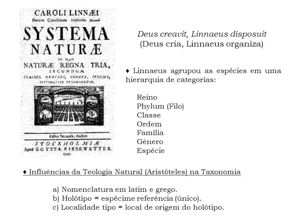 Deus creavit, Linnaeus disposuit (Deus cria, Linnaeus organiza) Linnaeus agrupou as espécies em uma hierarquia de categorias: Reino Phylum (Filo) Clas