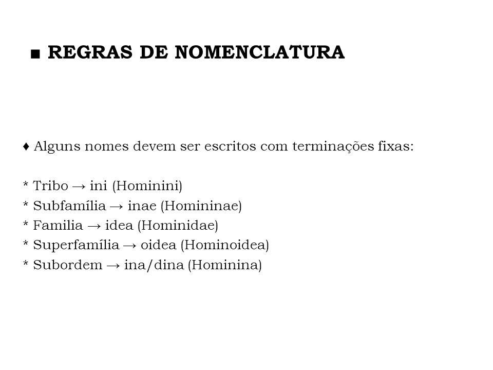 Alguns nomes devem ser escritos com terminações fixas: * Tribo ini (Hominini) * Subfamília inae (Homininae) * Familia idea (Hominidae) * Superfamília