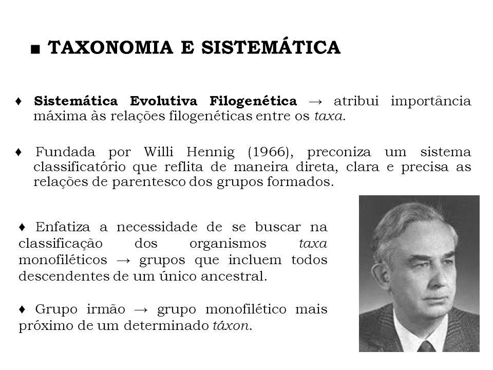 TAXONOMIA E SISTEMÁTICA Sistemática Evolutiva Filogenética atribui importância máxima às relações filogenéticas entre os taxa. Fundada por Willi Henni