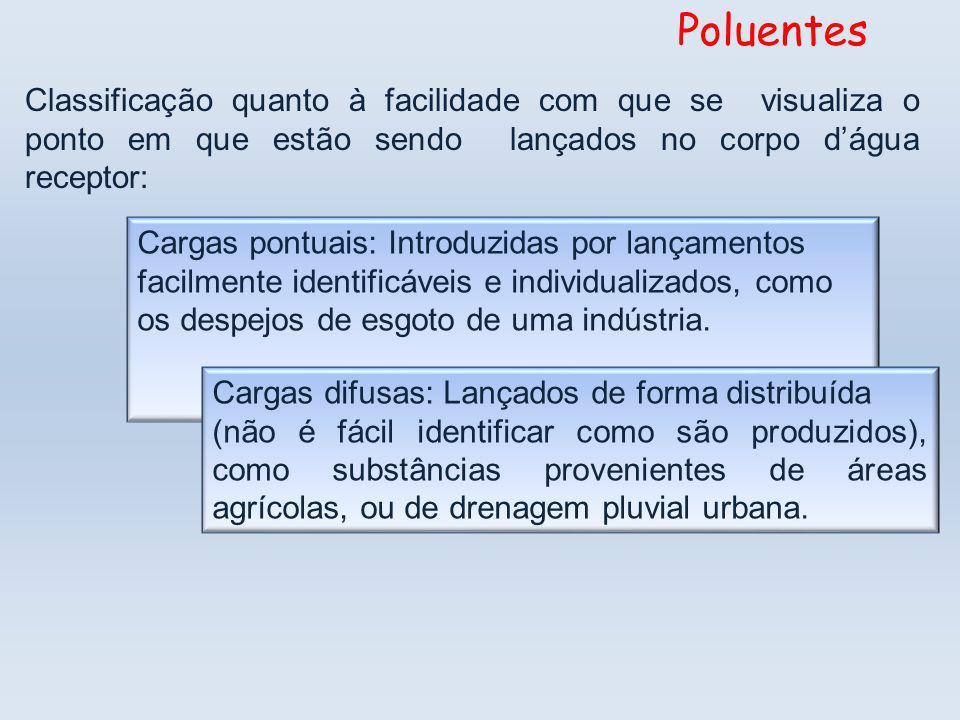 Cargas pontuais: Introduzidas por lançamentos facilmente identificáveis e individualizados, como os despejos de esgoto de uma indústria.
