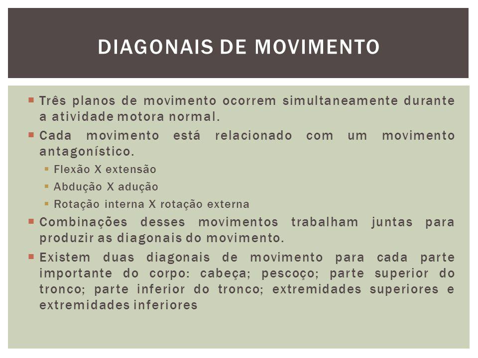 Três planos de movimento ocorrem simultaneamente durante a atividade motora normal. Cada movimento está relacionado com um movimento antagonístico. Fl