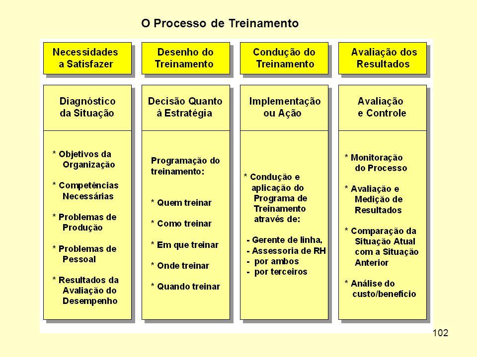 101 As Etapas do Processo de Treinamento