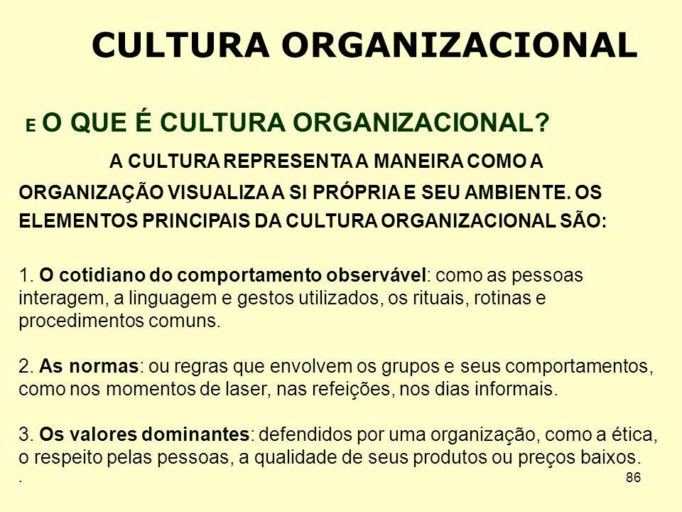85 Orientação das Pessoas A Cultura Organizacional. Componentes da Cultura Organizacional. A Socialização Organizacional. Métodos de Socialização Orga