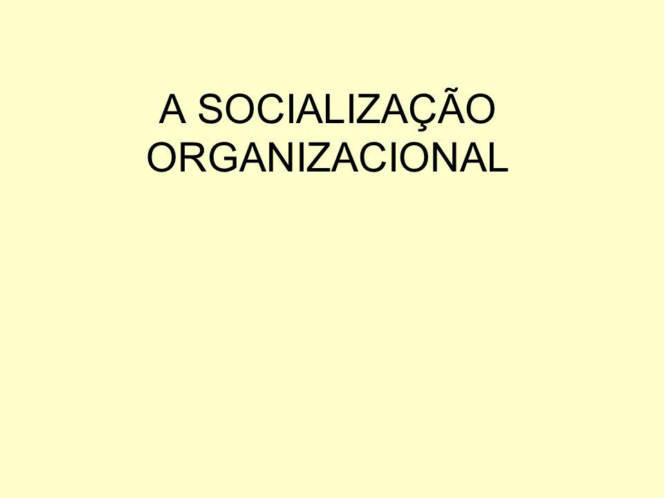 91 Os dois lados da adaptação mútua entre pessoas e organizações.