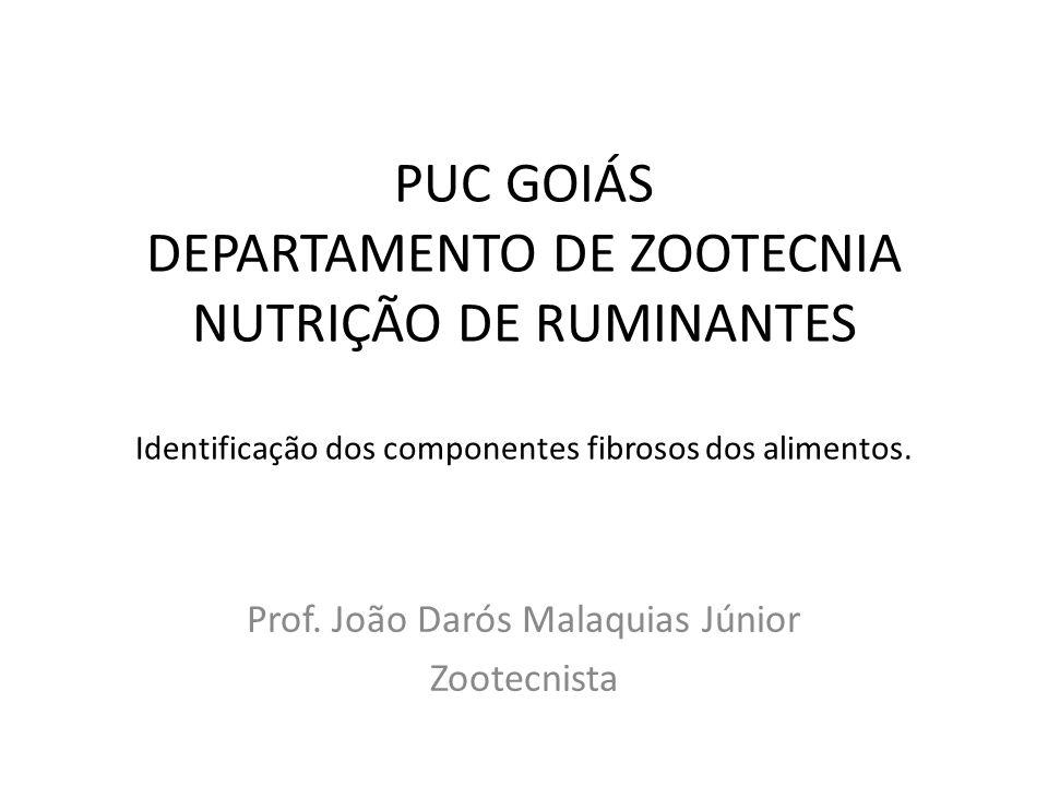 PUC GOIÁS DEPARTAMENTO DE ZOOTECNIA NUTRIÇÃO DE RUMINANTES Identificação dos componentes fibrosos dos alimentos.