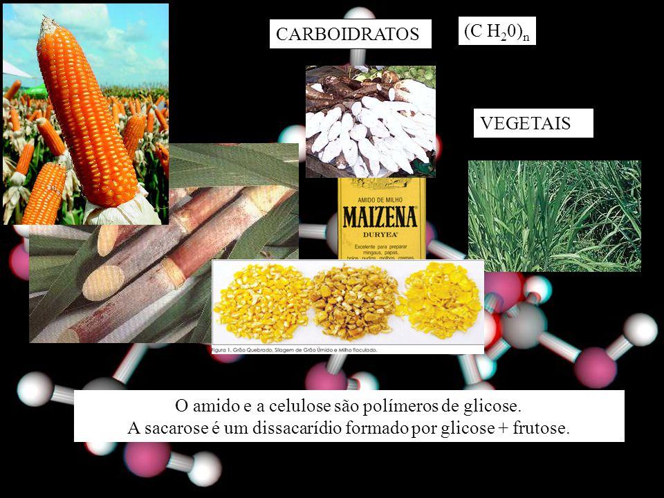 CARBOIDRATOS (C H 2 0) n VEGETAIS O amido e a celulose são polímeros de glicose.