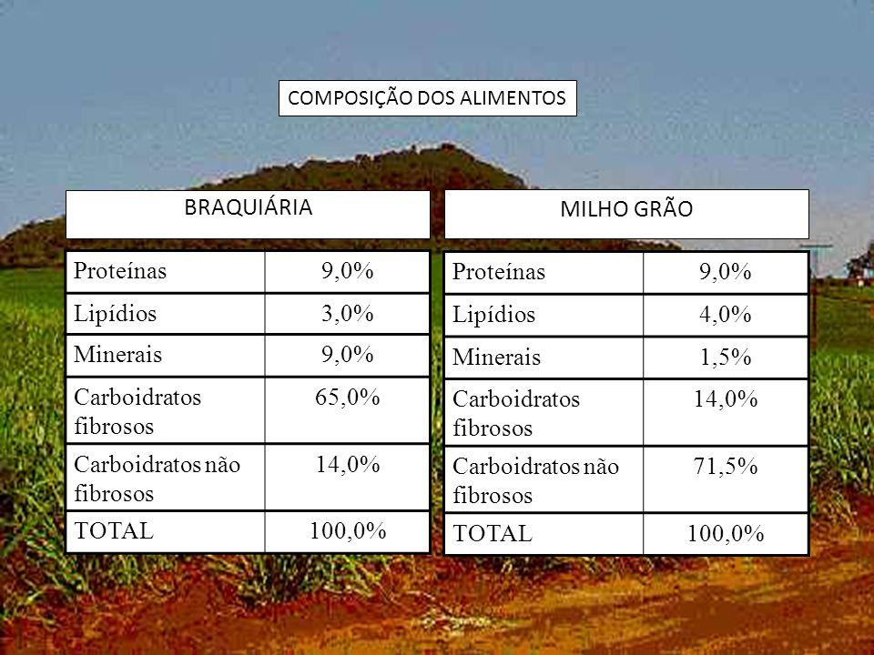 BRAQUIÁRIA MILHO GRÃO Proteínas9,0% Lipídios3,0% Minerais9,0% Carboidratos fibrosos 65,0% Carboidratos não fibrosos 14,0% TOTAL100,0% Proteínas9,0% Lipídios4,0% Minerais1,5% Carboidratos fibrosos 14,0% Carboidratos não fibrosos 71,5% TOTAL100,0% COMPOSIÇÃO DOS ALIMENTOS